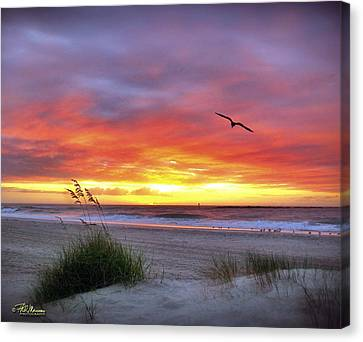 Masonboro Inlet Sunrise Canvas Print by Phil Mancuso