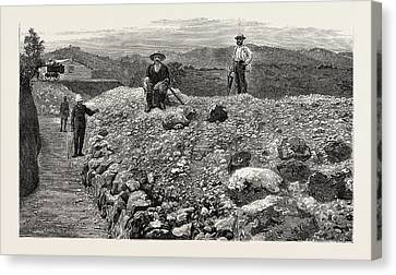 Mass Of Quartz Excavated From No Canvas Print