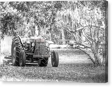 Massey Ferguson Tractor Canvas Print