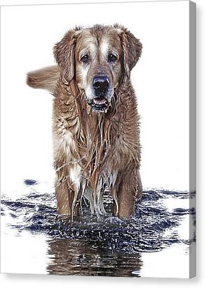 Master Of Wet Elements Canvas Print