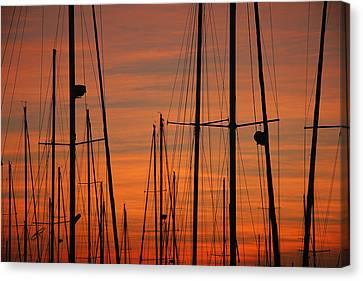 Masts At Sunset Canvas Print