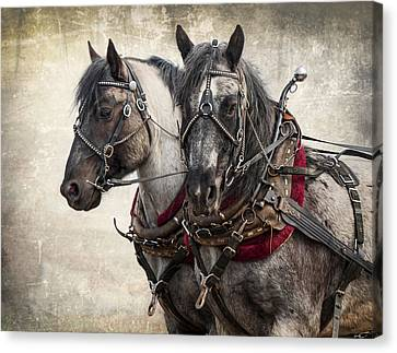 Matched Pair Canvas Print