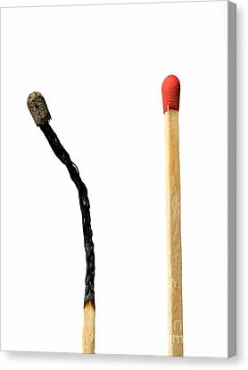 Matches Combustion Canvas Print by Sinisa Botas