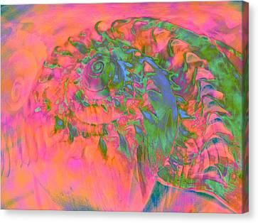 Materialization Of A Shell Canvas Print