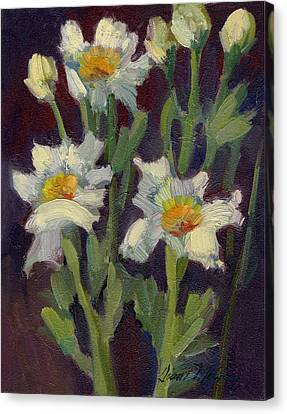 Matilija Poppies Canvas Print