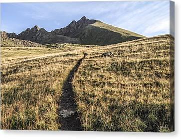 Matterhorn Peak - Colorado Canvas Print by Aaron Spong
