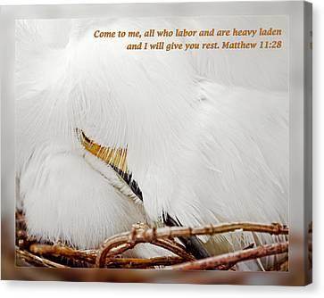 Matthew 11 28 Canvas Print