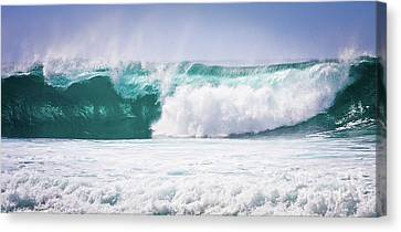 Maui Huge Wave Canvas Print by Denis Dore