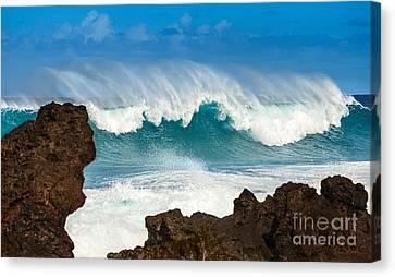 Sea Watch Canvas Print - Maui Monster by Jamie Pham