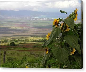 Canvas Print - Maui Northwest View by Robert Lozen