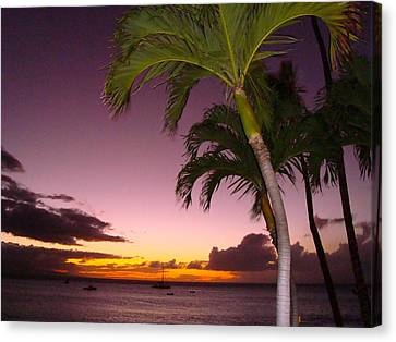 Canvas Print featuring the photograph Maui Seascape And Palms by Tamara Bettencourt