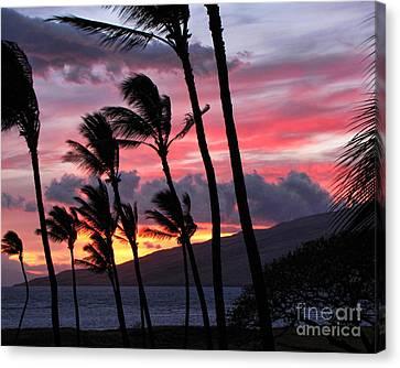 Maui Sunset Canvas Print by Peggy Hughes