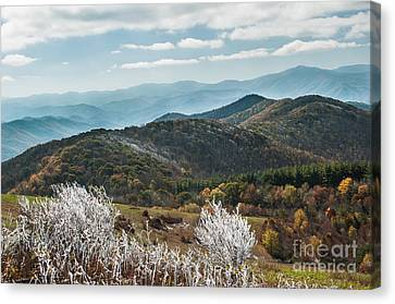 Canvas Print featuring the photograph Max Patch In Appalachian Mountains by Debbie Green