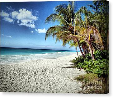 Canvas Print featuring the photograph Maxwell Beach Barbados by Polly Peacock