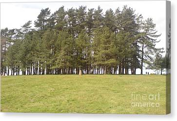 Canvas Print featuring the photograph May Hill Tree Tops by John Williams