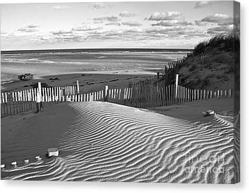 Mayflower Beach Black And White Canvas Print by Amazing Jules