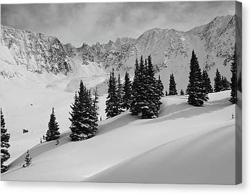 Summit County Canvas Print - Mayflower Gulch Monochrome by Eric Glaser