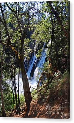 Canvas Print featuring the photograph Mcarthur-burney Falls Side View by Debra Thompson