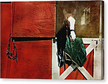Horse Stable Canvas Print - Mcduffy by Diana Angstadt