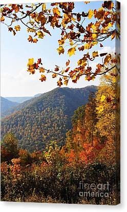 Mcguire Mountain Overlook Canvas Print by Thomas R Fletcher