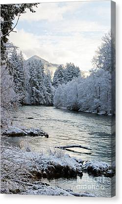 Canvas Print featuring the photograph Mckenzie River by Belinda Greb