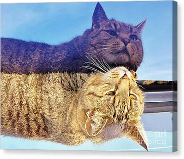 Me And Me Canvas Print by Judy Via-Wolff