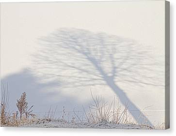 Me And My Shadow Canvas Print by James BO  Insogna