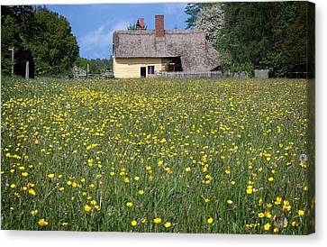 Meadow Cottage Canvas Print by Stephen Norris
