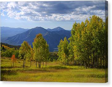 Meadow Highlights Canvas Print by Chad Dutson
