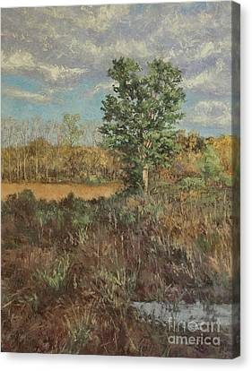 Meadow In The Hollow - May Canvas Print by Gregory Arnett