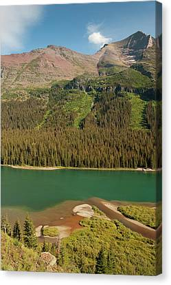Meadow, Mountain, And Avalanche Path Canvas Print by Howie Garber
