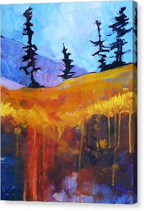 Meadow Mountain Canvas Print by Nancy Merkle