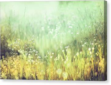 Breath Canvas Print - Meadowland by Amy Tyler