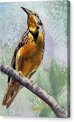 Meadowlark Canvas Print by Anne Gifford