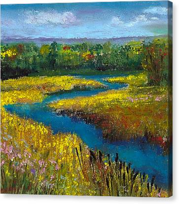 Meandering Stream Canvas Print by David Patterson