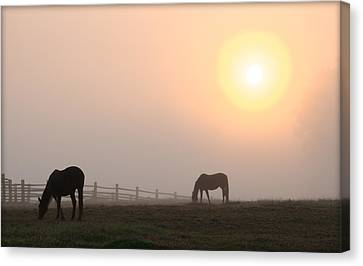 Meanwhile Back At The Ranch Canvas Print by Bill Cannon