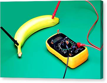 Measuring Resistance Of A Banana Food Physics Canvas Print by Paul Ge
