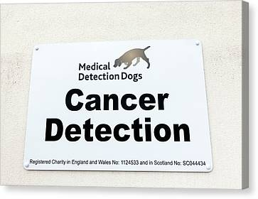 Cancer Canvas Print - Medical Detection Dogs Sign by Louise Murray