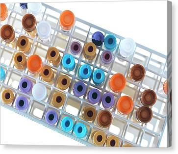Medical Samples In A Test Tube Rack Canvas Print
