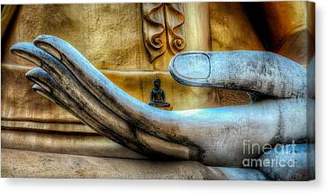Meditation  Canvas Print by Adrian Evans