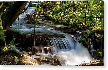 Meditation - Bridal Veil Falls Canvas Print by Jordan Blackstone
