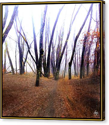 Canvas Print featuring the photograph Meditation On Fear by Wayne King