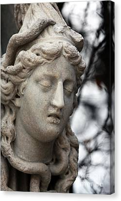 Medusa Head Canvas Print by John Rizzuto
