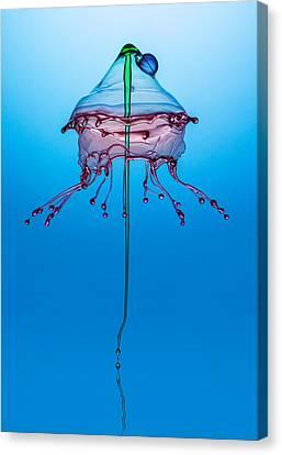 Medusa Canvas Print by Jaroslaw Blaminsky