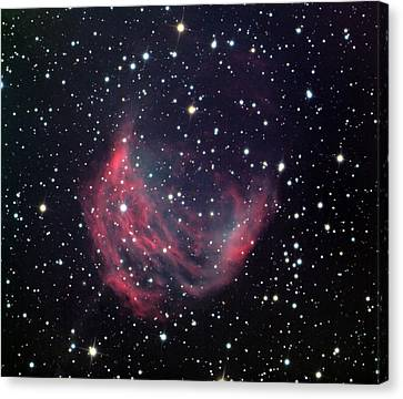 Medusa Nebula Canvas Print by Celestial Images