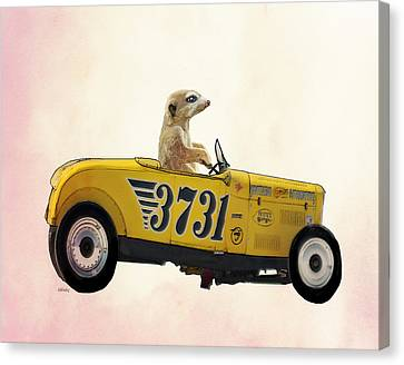 Meerkat And Hot Rod Canvas Print by Kelly McLaughlan