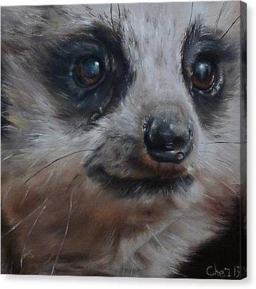Meerkat Canvas Print by Cherise Foster