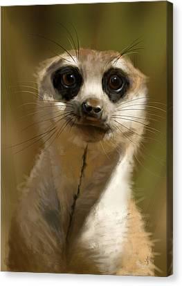 Meerkat Guardian Canvas Print by Arie Van der Wijst