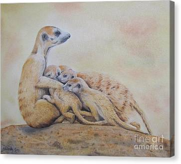 Meerkat Mommy Canvas Print by Christelle Grey