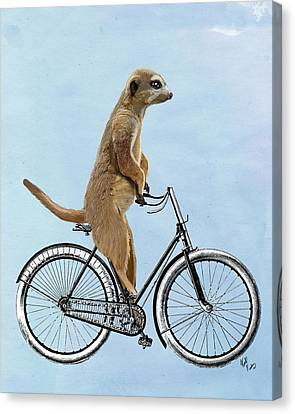 Meerkat On A Bicycle Canvas Print by Loopylolly